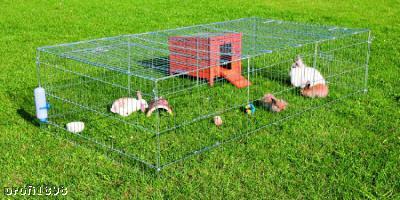 trixie freilaufgehege f r kaninchen freigehege 62452 ebay. Black Bedroom Furniture Sets. Home Design Ideas